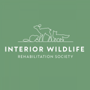 Interior Wildlife Rehabilitation Society